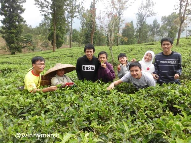 Bersama ibu pemetik teh di Bogor