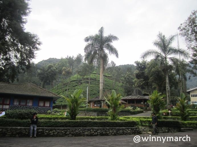 Pemandangan Bogor