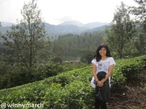 me in tea garden, Cisarua Bogor