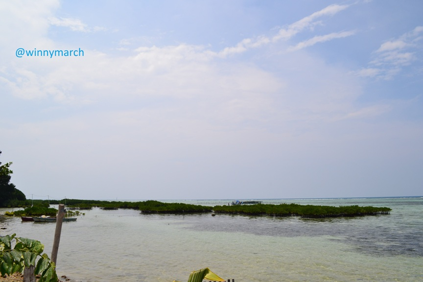 pulau pramuka-kepulauan seribu