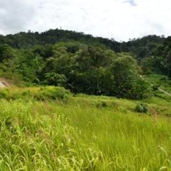 Pemandangan di sekitar benteng Huraba