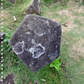 Batuan Vulkanik bersisi 5