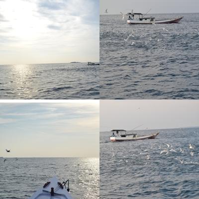 karimun jawa for fishing