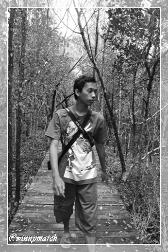 Sigit di Hutan Mangrove