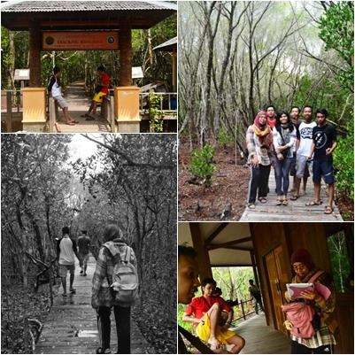 Wisata Hutan Mangrove Karimun Jawa