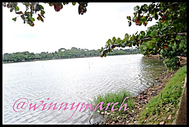 Danau Situ Babakan