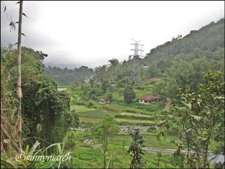 Pemandangan pedesaan di Padang Panjang
