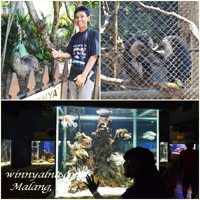 secret zoo batu malang jatim