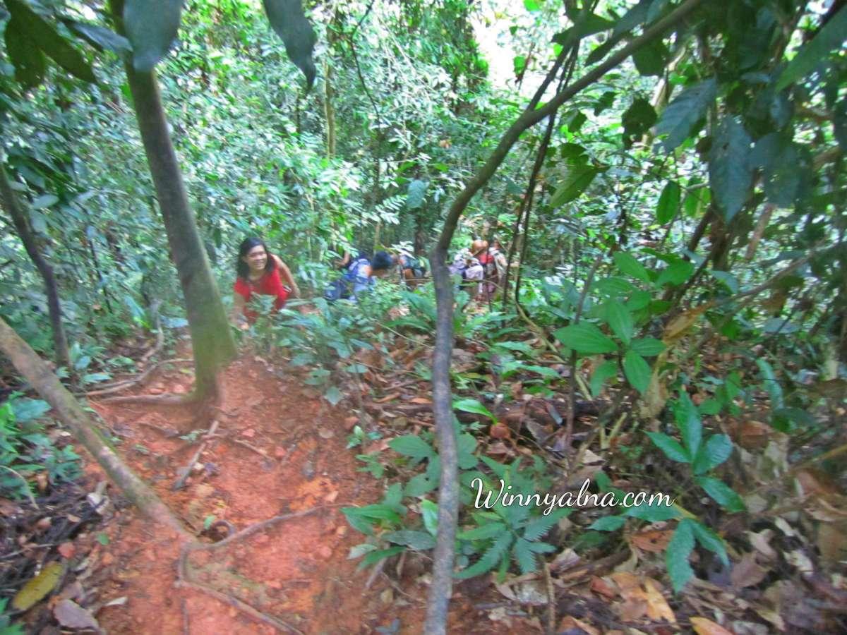 Trekking ke Gunung Lauser