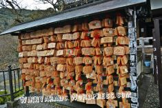 kiyomizudera temple
