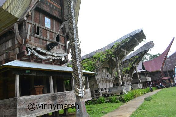 Tenun di Toraja
