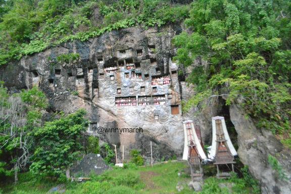 Makam Lemo Toraja