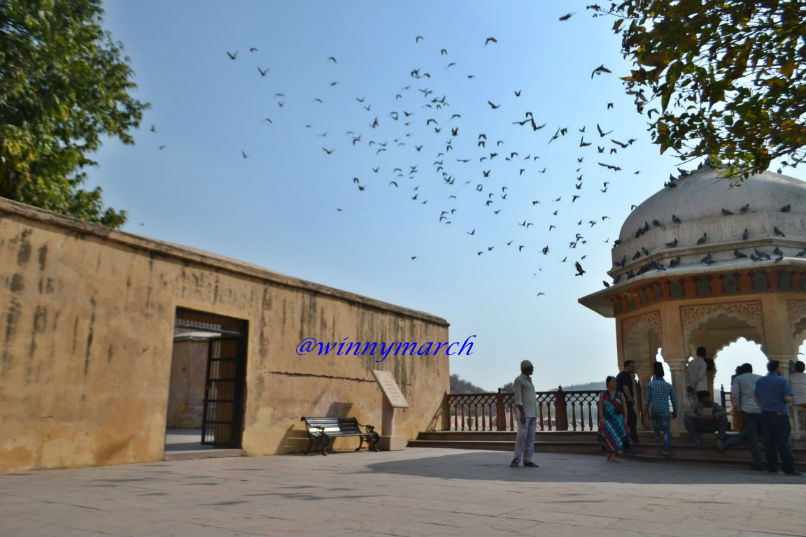 Ambert Fort Rajashtan