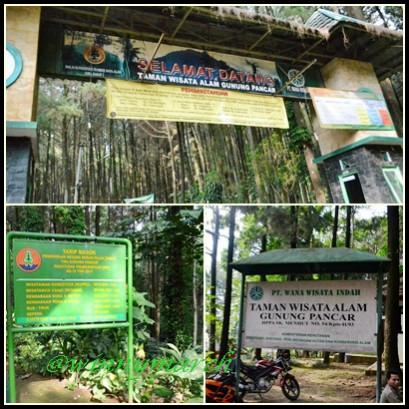 Tiket masuk Gunung Pancar Sentul Bogor