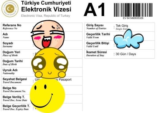 E-Visa Turki
