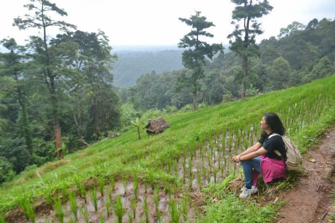 Jalan Curug Kembar dan Ciajeung Banten