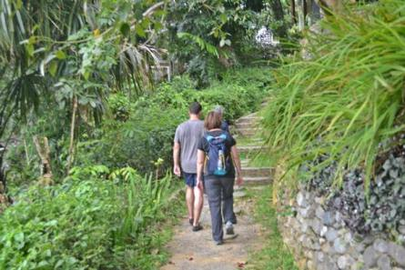Trekking Bukit Lawang